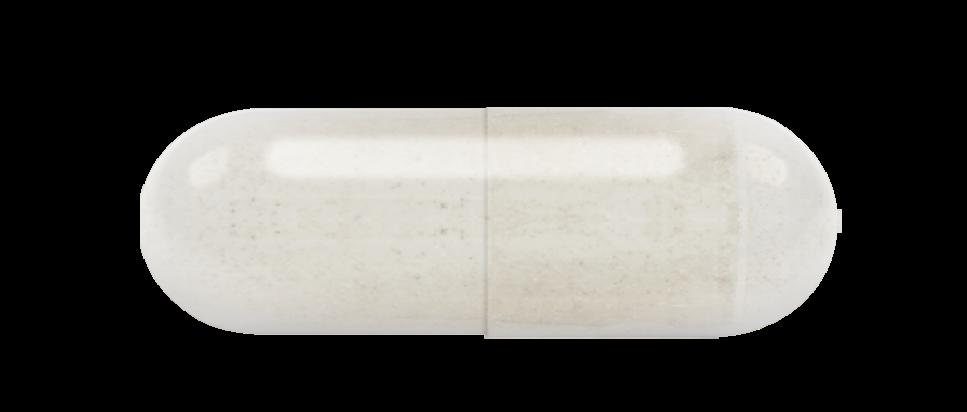 프로바이오틱스 (냉장보관)